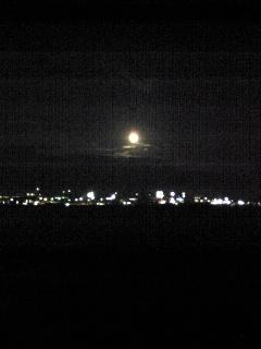 昨夜の月と入荷情報