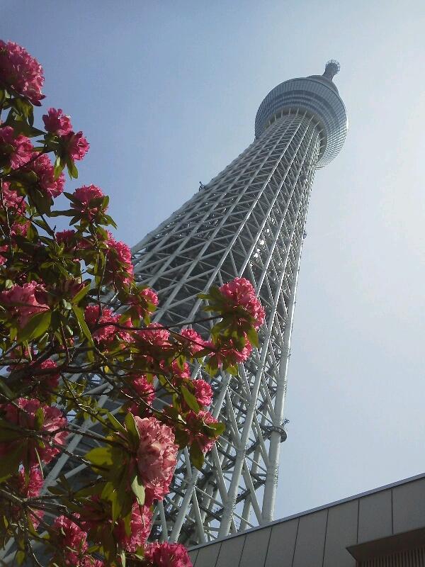 東京と神奈川へ