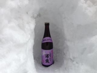 浦霞しぼりたて純米生酒